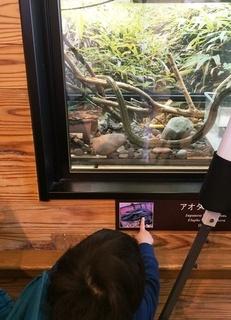 千葉つばさ_動物園蛇.jpeg