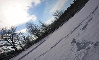 木俣_雪景色.JPG